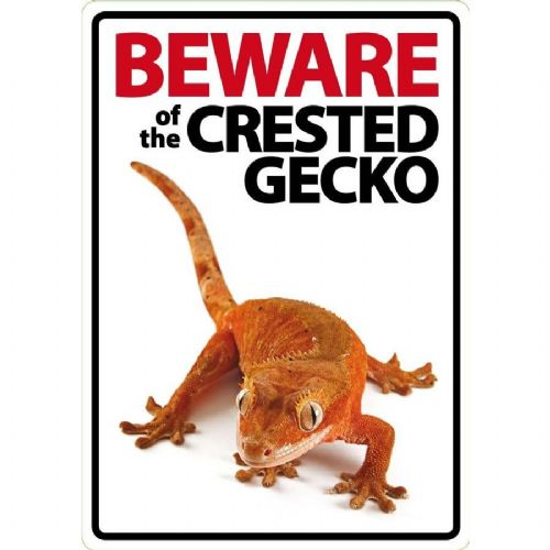 Beware Sign: Crested Gecko